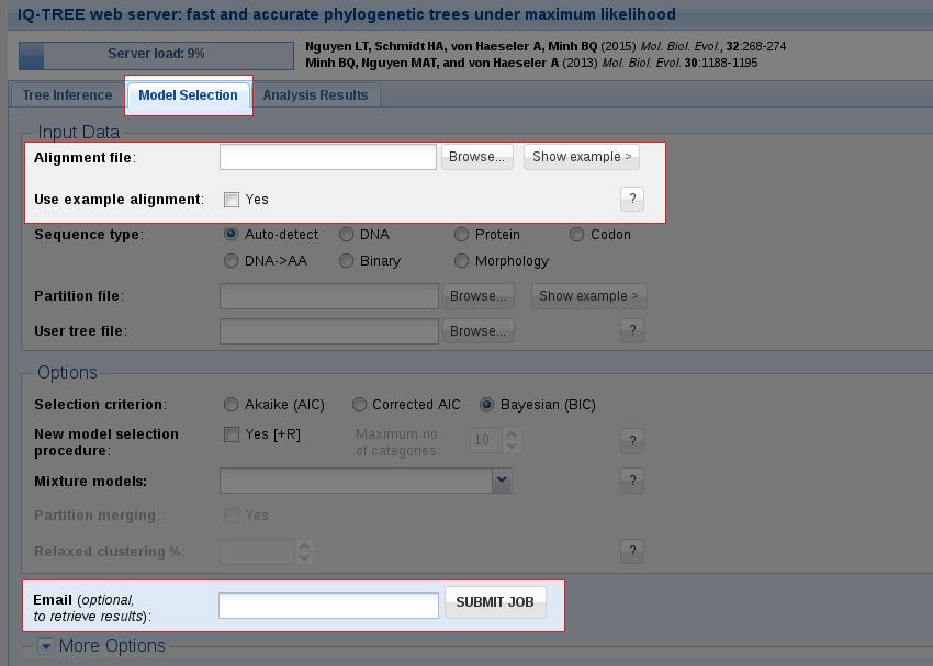 Web Server Tutorial